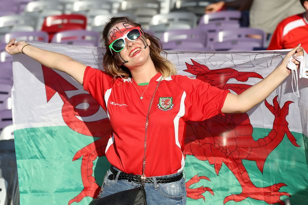 Euro 2016 WAGs: Wales